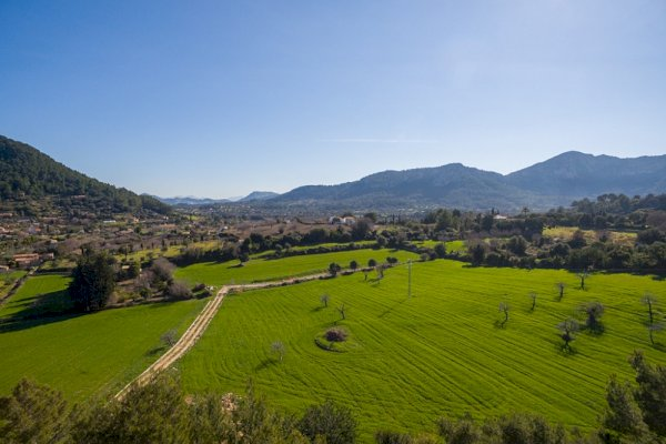 Pollensa land for sale - country views
